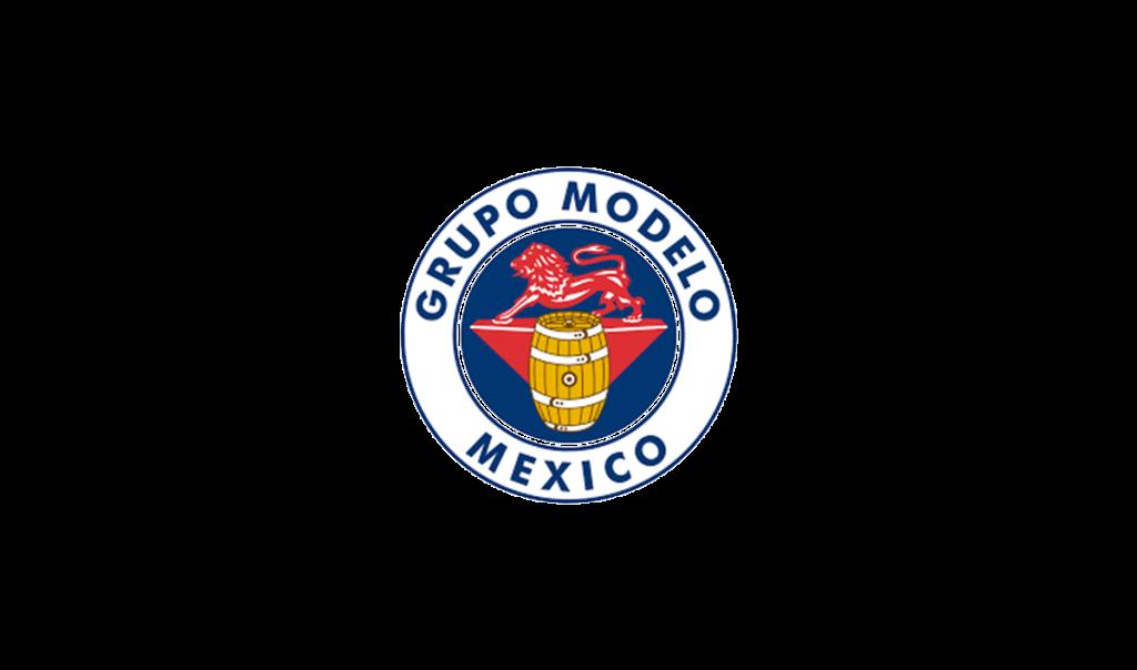 GRUPO MODELO MEXICO-DETECTORES FIJOS (s+t)